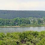 Вид на реку Томь, на правый берег и сосновый бор