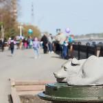 Памятник бездомной собаке на Притомской набережной