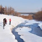 "Берег реки Искитимка в парке ""Антошка"""