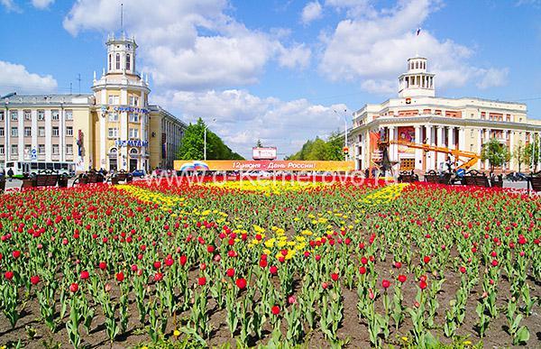 Площадь Советов, клумба перед памятником Ленину