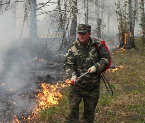 Глава Кузбасса рассказал, как в регионе удалось избежать масштабных лесных пожаров