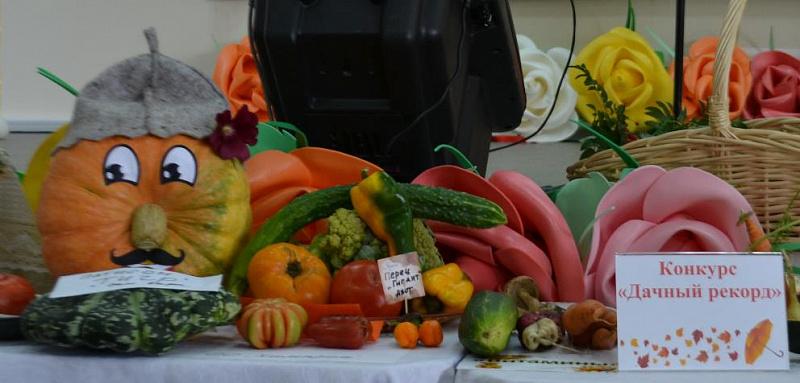 Рекорды кемеровских дачников: килограммовый помидор, огурец длиною 77 см, 10-килограммовая тыква