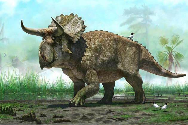 Известный российский палеонтолог раскроет желающим секреты кузбасских динозавров
