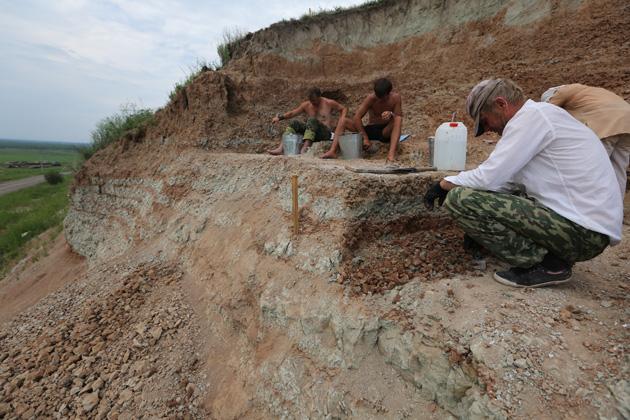 Международный палеонтологический центр построят в Кузбассе на родине динозавров