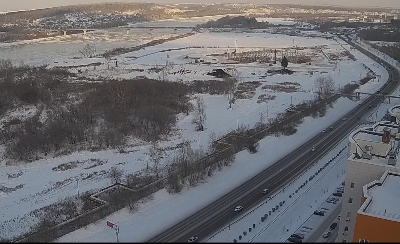 Вековую ель, попадавшую в зону застройки ледового дворца в Кемерове, спасли