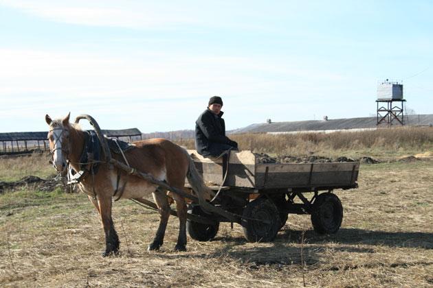 Кузбасские аграрии получат удобрения в беспроцентную рассрочку