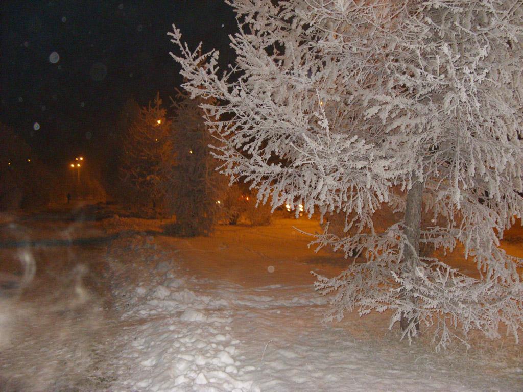 Кузбасский ледниковый период: ученые рассказали об изменении нашего климата