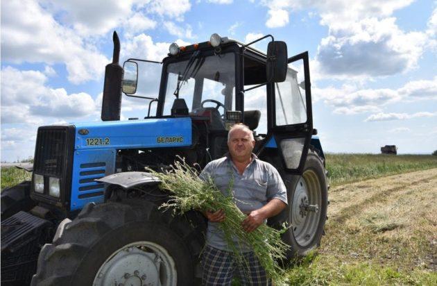 Кузбасские фермеры ввели в оборот тысячи гектаров невостребованной земли