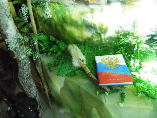 В Прокопьевске оштрафовали лжеубийцу