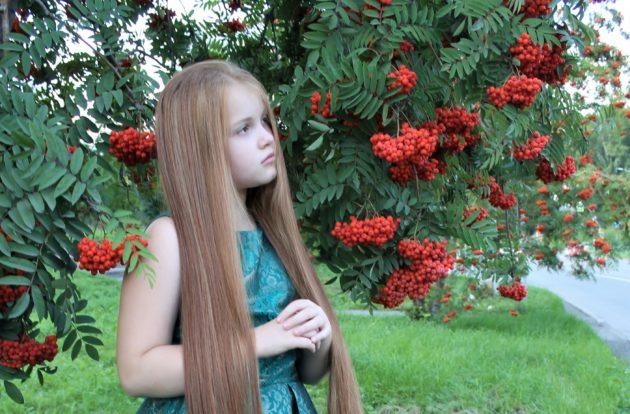 Рекорд кузбасской Златовласки: такой задумчивой красы другой на свете нет…