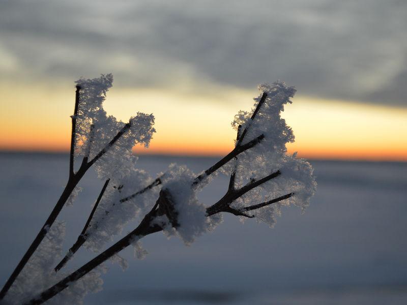 В Кузбассе снова похолодает на этой неделе