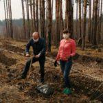 В Кузбассе посадят более 156 тысяч деревьев в память о солдатах, погибших за Родину