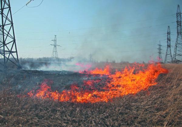 В Кузбассе произошли уже более 60 возгораний сухой травы