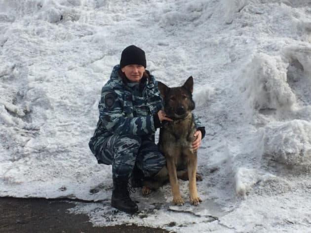 Бета и Дейзи помогли раскрыть преступления в Прокопьевске и Осинниках