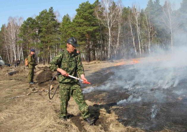 Первый лесной пожар нынешней весны потушен в Мариинском лесничестве