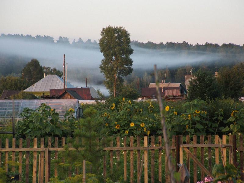 Саду – цвесть: когда начнется и как будет защищен от коронавируса дачный сезон в Кузбассе