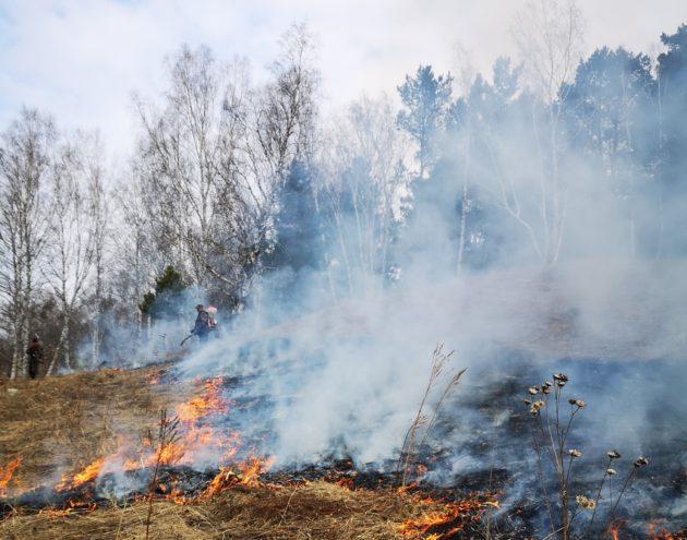 В Юргинском и Промышленновском округах потушили лесные пожары