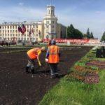 22 тысячи цветов высадят на центральной клумбе площади Советов в Кемерове
