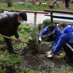 В Белове благоустроили дворы домов ветеранов