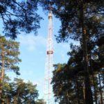 В Кемерове разрешены прогулки в Рудничном бору
