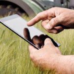 Кузбасским фермерам помогают получать гранты онлайн