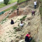 На Шестаковском комплексе сделаны новые палеонтологические находки