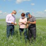 Аграрии Крапивинского округа подводят итоги проведения посевной кампании