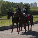 У Кузбасса появилась собственная регулярная кавалерия