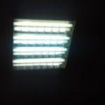 В Киселёвске названы адреса, куда можно сдать батарейки и лампочки