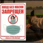 В Кемерове составили 205 протоколов на нарушителей масочного режима