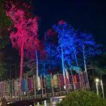 Городской сад Мариинска превратили в волшебный лес