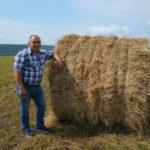Фермер из Новокузнецкого района будет разводить быков элитной породы