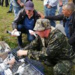 В Новокузнецком районе прошла выставка-ярмарка голубей