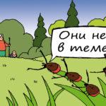Клещи атаковали уже более 30 тысяч жителей Кузбасса