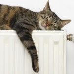 В 11 территориях Кузбасса началась подача тепла