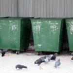 В Кузбассе подросток повредил голову об мусорный контейнер