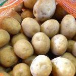 Время копать картошку: синоптики рассказали, какой погоды ждать на выходных