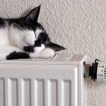 Тепло идёт:  в Кузбассе включили батареи уже в 39,5 процентов домов