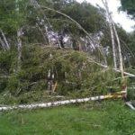 В Кузбассе ликвидируют последствия урагана