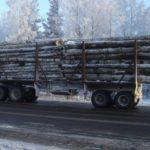 Кузбасского тракториста осудили за гибель женщины под прицепом с деревьями