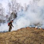 Для борьбы с черными лесорубами в Кузбасс поступили вездеход, снегоходы и УАЗики