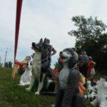 «Не оставляйте без присмотра!»: в Мариинском районе отлавливают бродячих собак и кошек