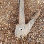 В Искитимке был найден столетний корабельный якорь