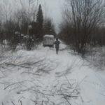 Мысковские казаки бороздят лесные дебри