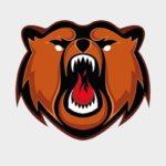 «Кузнецкие медведи» разгромно проиграли «Толпару» на своём льду