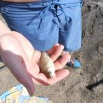 В Мысках рыбак поразил своим «уловом»