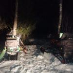 Два кузбасских браконьера, застрелившие беременную лосиху, пошли под суд