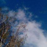 В Кузбассе сохранится неустойчивая погода