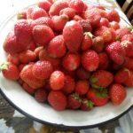 В Прокопьевске местные жители получили посылки с чудо-семенами