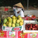 Санитарные врачи изъяли из продажи 1800 кг овощей и фруктов